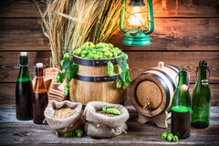 Homemade brewing beer in the cellar Stock Image