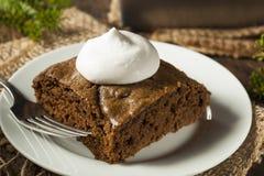 Homemade Brown Gingerbread Cake Royalty Free Stock Photos
