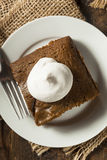 Homemade Brown Gingerbread Cake Stock Photography