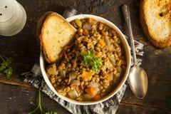 Homemade Brown Lentil Soup Stock Photos