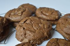 Homemade brownie coockie. S - strong and rich chocolate cookies Royalty Free Stock Photography