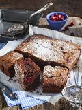 Homemade brownie with cranberries Stock Images