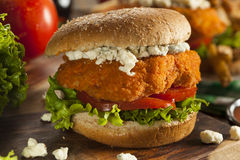 Homemade Buffalo Chicken Sandwich Stock Images