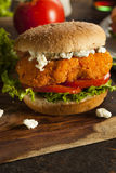 Homemade Buffalo Chicken Sandwich Royalty Free Stock Photo