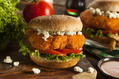Homemade Buffalo Chicken Sandwich Royalty Free Stock Photos