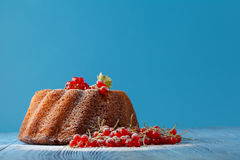 Homemade bundt cake with icing sugar. Royalty Free Stock Photos