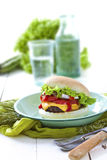 Homemade burger. Homemade cheeseburger with fresh tomato, lettuce and onions stock photo