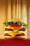 Homemade burger Royalty Free Stock Photo
