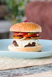 Homemade Burger Stock Photos