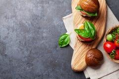 Homemade burgers Stock Image