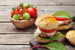 Homemade burgers Royalty Free Stock Image