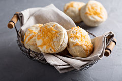 Homemade buttermilk biscuits with cheddar cheese Stock Photography