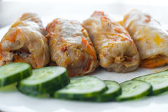 Homemade cabbage rolls Royalty Free Stock Photography
