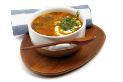 Homemade Cabbage Soup Stock Image