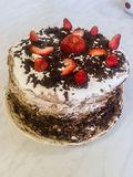 Homemade cake. Royalty Free Stock Photography