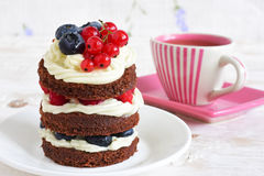 Homemade cake with berries Stock Image