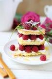 Homemade cake with fresh raspberries. Food close up Stock Photos