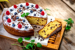 Homemade cake with raisin Stock Photography