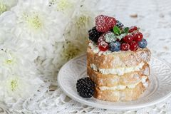 Homemade cake with ricotta and fresh berries-raspberries, red currants, blueberries and blackberries with mint and powdered sugar. Selective focus Royalty Free Stock Photo