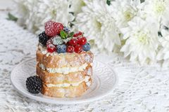 Homemade cake with ricotta and fresh berries-raspberries, red currants, blueberries and blackberries with mint and powdered sugar. Selective focus Stock Photos