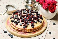 Homemade cake Royalty Free Stock Photo