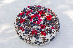 Homemade cake topped with blueberries and pieces of red jelly Stock Images