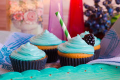 Homemade cakes for the holiday. Homemade cupcakes with mint cream Royalty Free Stock Photo