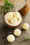 Homemade candies with coconut Royalty Free Stock Photo