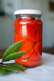 Homemade canned fresh red peppers. Over natural background Royalty Free Stock Photos