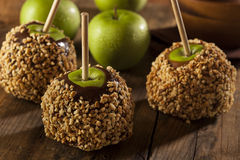 Homemade Caramel Taffy Apple with Peanuts Stock Photos