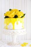Homemade carrot cake Stock Images