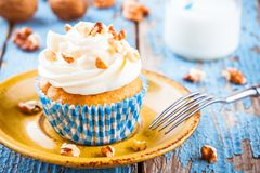 Homemade carrot cupcakes. Homemade carrot-cupcakes with cream cheese frosting Stock Photography