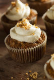 Homemade Carrot Cupcakes with Cream Cheese Frosting Stock Images