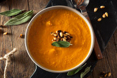 Homemade Carrot Ginger Soup Stock Photography