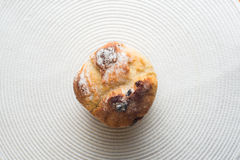 Homemade carrot muffin with empty space on white fabric background. Copyspace top view Stock Images