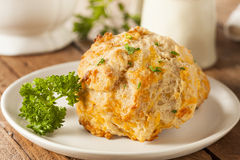 Homemade Cheddar Cheese Biscuits Royalty Free Stock Images