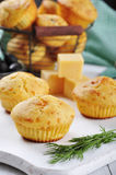 Homemade cheese muffins Stock Image