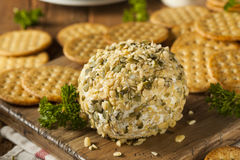 Homemade Cheeseball with Nuts Stock Image