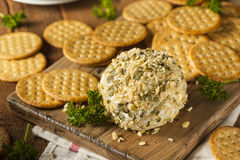 Free Homemade Cheeseball With Nuts Royalty Free Stock Images - 47265989