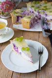 Homemade cheesecake Royalty Free Stock Images