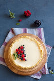 Homemade cheesecake with fresh berries Royalty Free Stock Photos