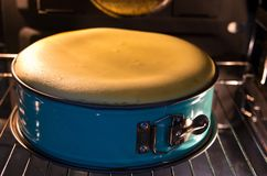 Homemade cheesecake in the oven Royalty Free Stock Image