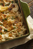 Homemade Cheesey Scalloped Potatoes Royalty Free Stock Photo