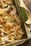 Homemade Cheesey Scalloped Potatoes. With Parsley Flakes Stock Photography