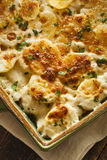 Homemade Cheesey Scalloped Potatoes. With Parsley Flakes Royalty Free Stock Images