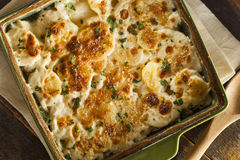 Homemade Cheesey Scalloped Potatoes Royalty Free Stock Photos