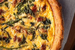 Homemade Cheesy Egg Quiche for Brunch Royalty Free Stock Photo