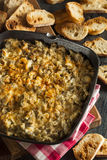 Homemade Cheesy Garlic Artichoke Spread Royalty Free Stock Image