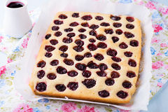 Homemade cherry cake with sauce Stock Photography