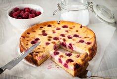 Homemade cherry creamcheese pie Stock Image